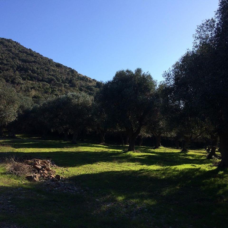lungo-il-Parco-della-Maremma